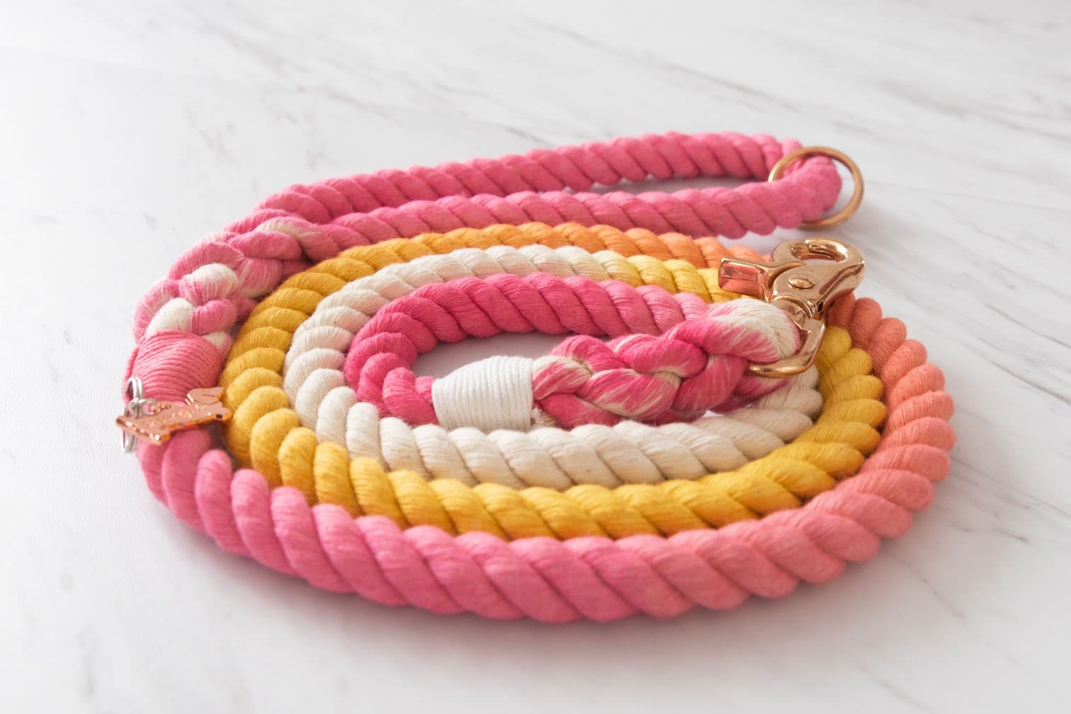 Rope Leash - Rainbow