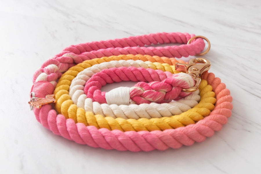 Rope Leash - Rainbow - Coco and Chili's Shop
