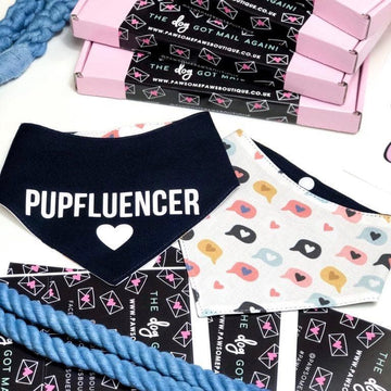 Reversible Bandana - Pupfluencer