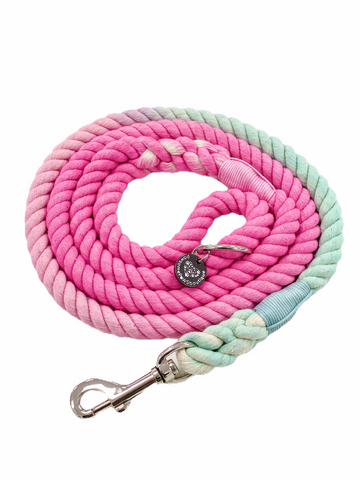 Rope Leash - Pixie Mint