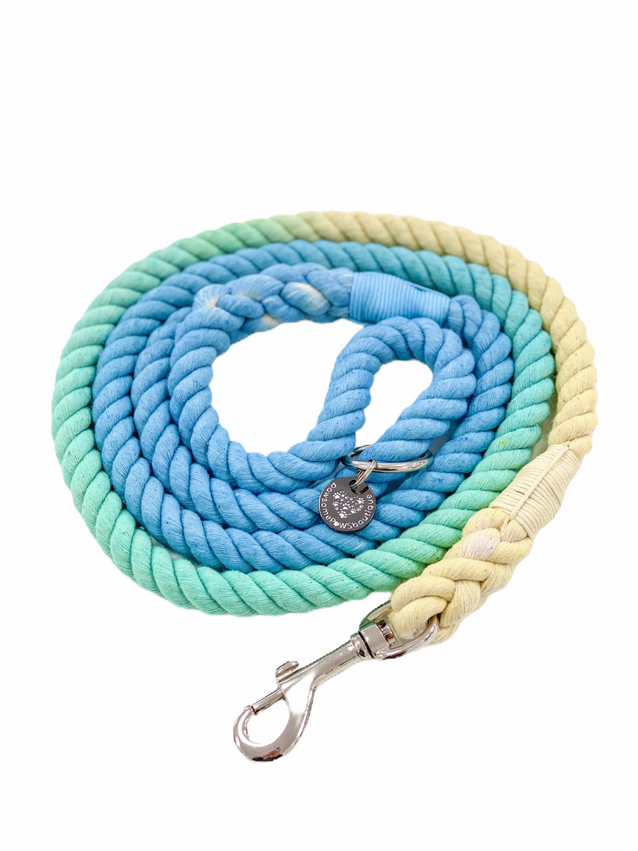 Pawsome Rope Leash - Tropical