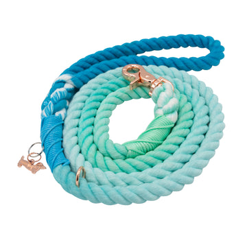Rope Leash - Tropic