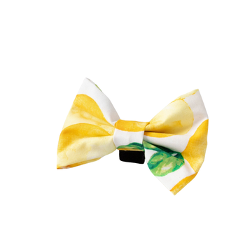 Bowtie - Lemon Drop