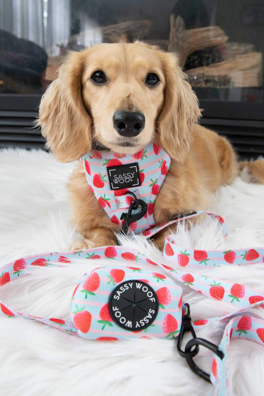 Adjustable Harness - I woof you berry much - Coco and Chili's Shop