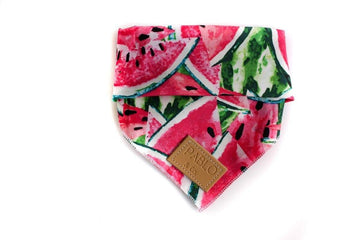 Bandana - Seedy Melon - Coco and Chili's Shop