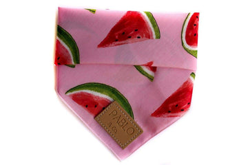Bandana - Watermelon - Coco and Chili's Shop