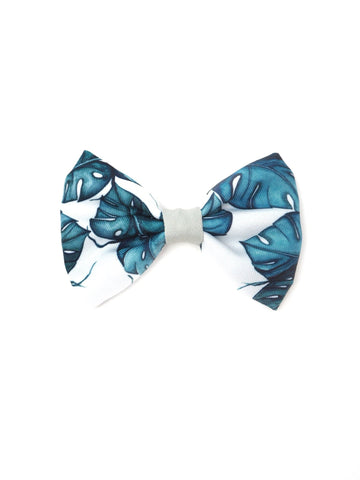 Bowtie - Palm Vibes - Coco and Chili's Shop
