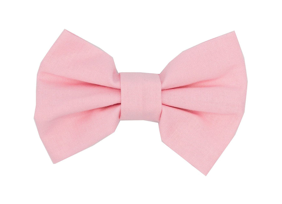 Bowtie - Rose - Coco and Chili's Shop
