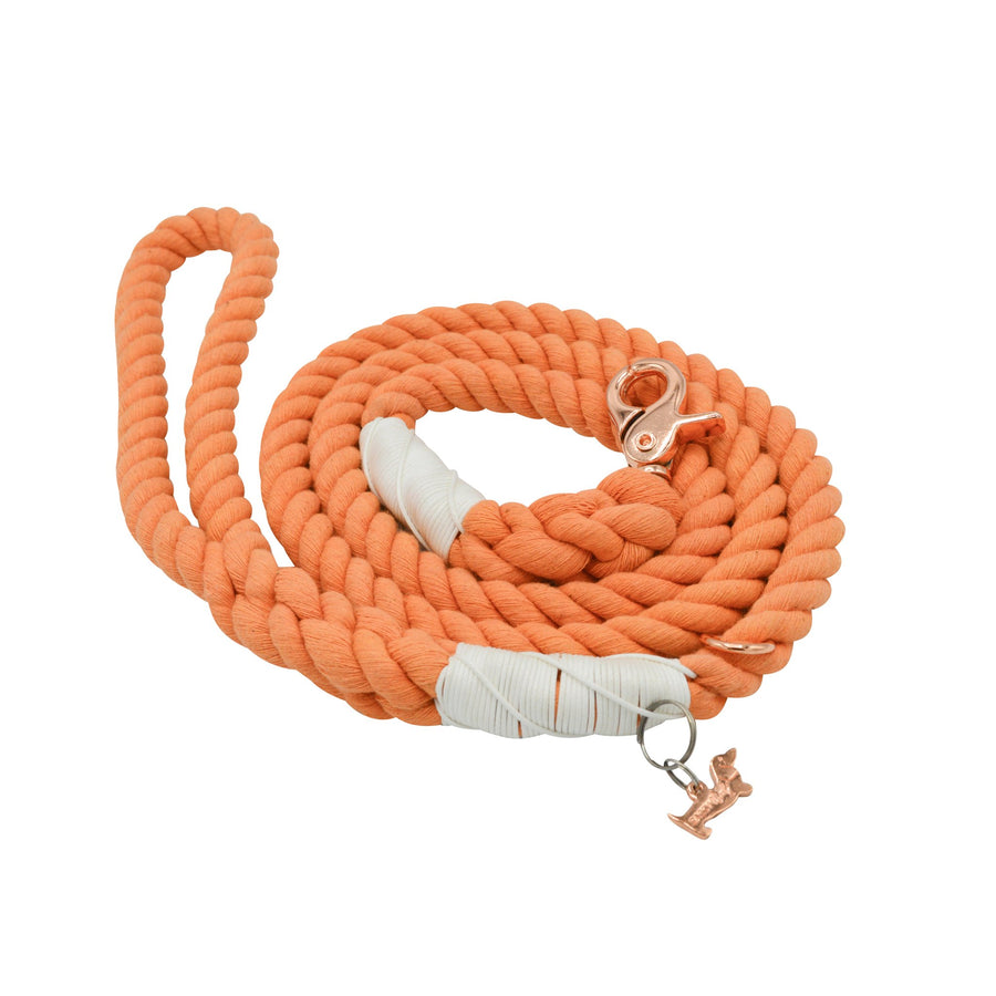 Sassy Rope Leash - Clementines