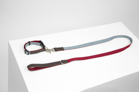 Frederick Collar & Leash Set