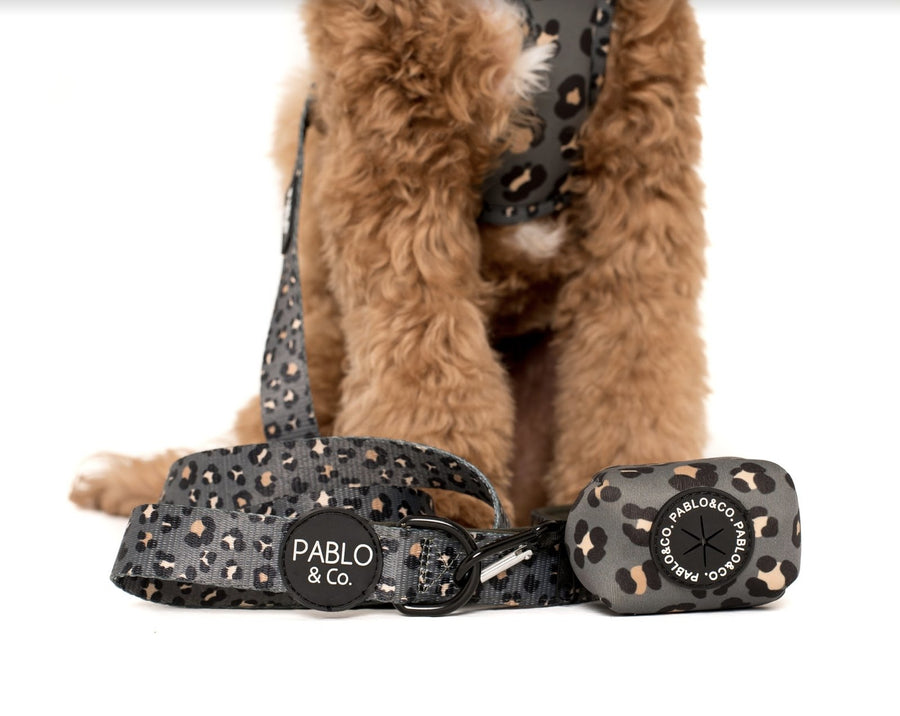 Leash: Khaki Leopard - Coco and Chili's Shop