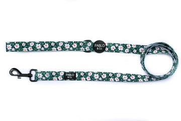 Leash - The Flower Garden - Coco and Chili's Shop