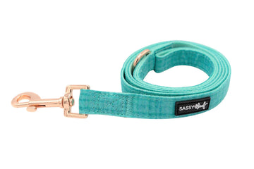 Leash - Wag your Teal - Coco and Chili's Shop