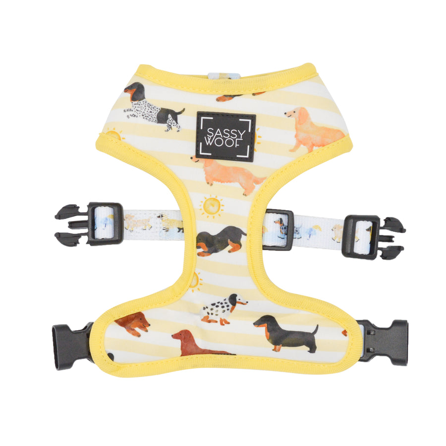Reversible Harness - Dachshund in the Rain