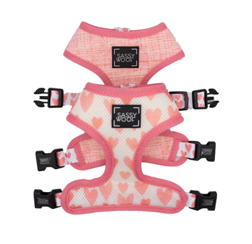 Reversible Harness - Dolce Rose - Coco and Chili's Shop