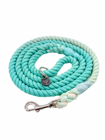 Rope Leash - Mint - Coco and Chili's Shop