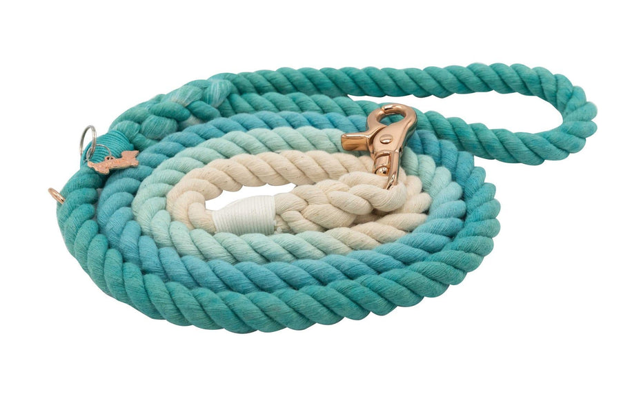 Rope Leash - Ombre Teal - Coco and Chili's Shop