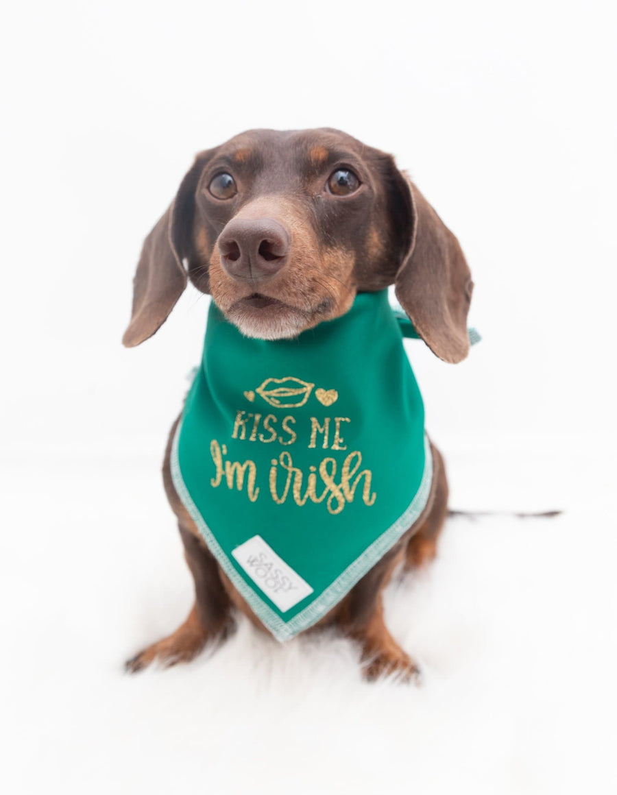St Patrick's Day Bandanas - Coco and Chili's Shop