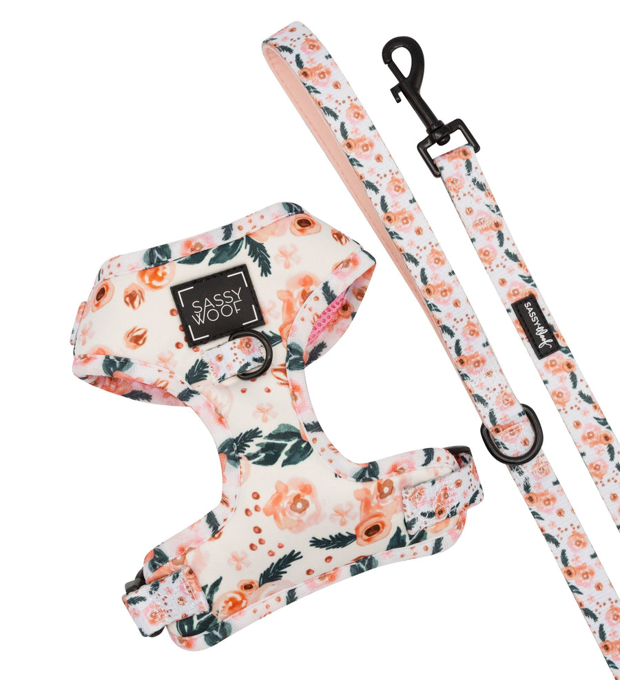 Adjustable Harness - Bella