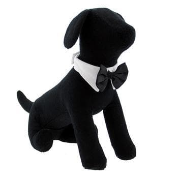 White Collar with Black Satin Bow Tie - Coco and Chili's Shop