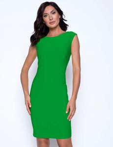 Frank Lyman Fitted Dress