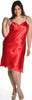 Women's Plus Size Silky Ballet Nightgown With Lace #6062X