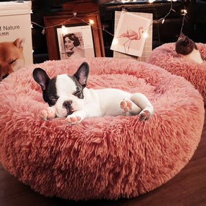 Fashion Soft Pet Bed Thick Warm Dog Kennel