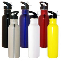 Promotional 800ml Stainless Steel Drink Bottle