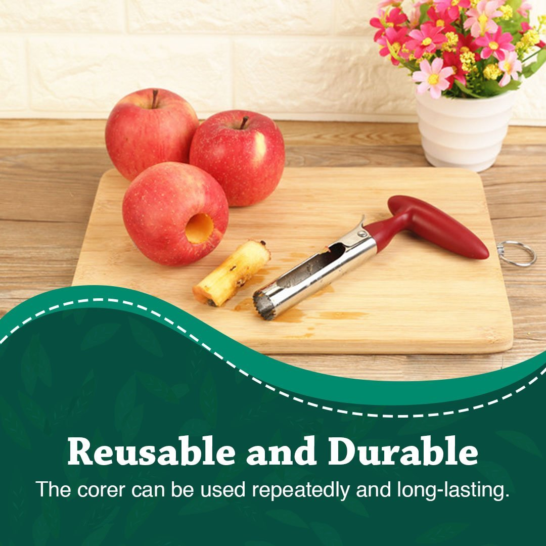 Stainless Steel Core Seed Remover