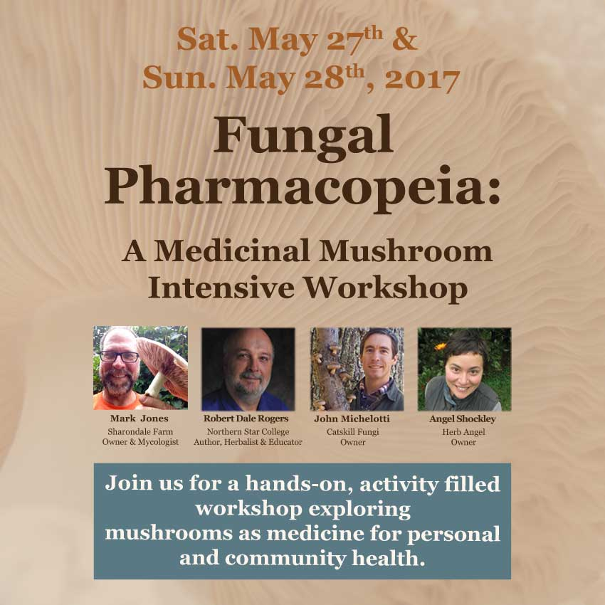 Fungal Pharmacopeia Workshop