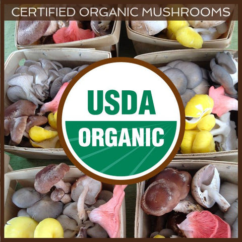 Fresh Organic Mushrooms at Charlottesville Area Grocers