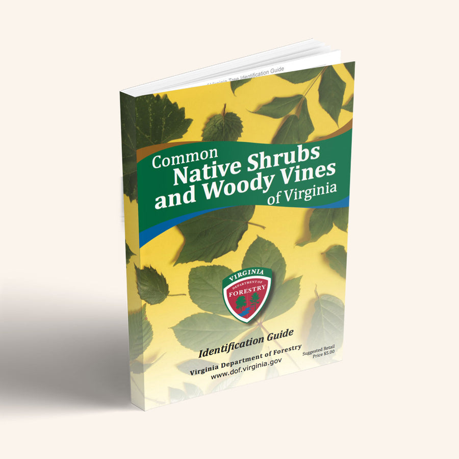 Common Native Shrubs and Woody Vines of Virginia Book