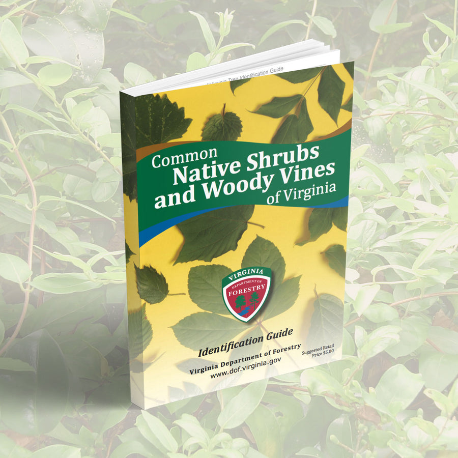 Common Native Shrubs and Woody Vines of Virginia field guide