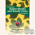 Common Native Shrubs and Woody Vines of Virginia front cover