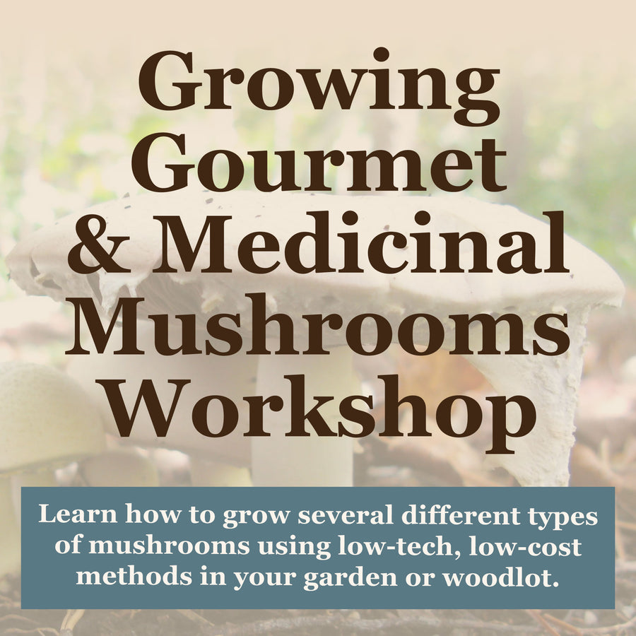 Growing Gourmet and Medical Mushrooms Workshop by Sharondale Farm
