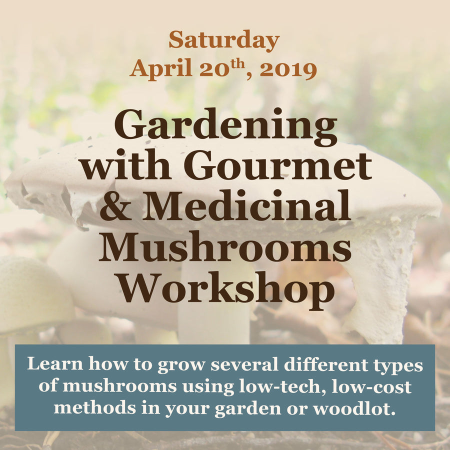 Gardening with Gourmet and Medicinal Mushrooms Workshop at Sharondale Farm