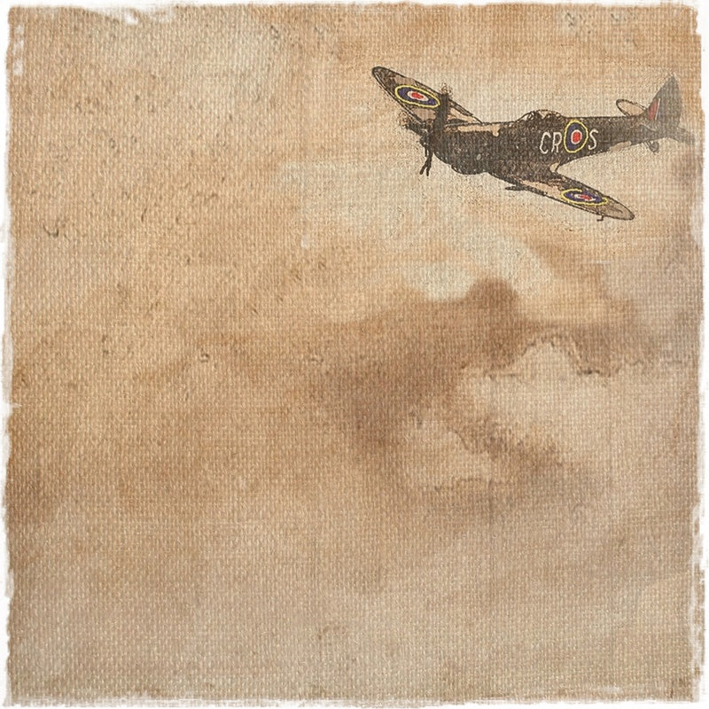 Royal Air Force by Sally Butler