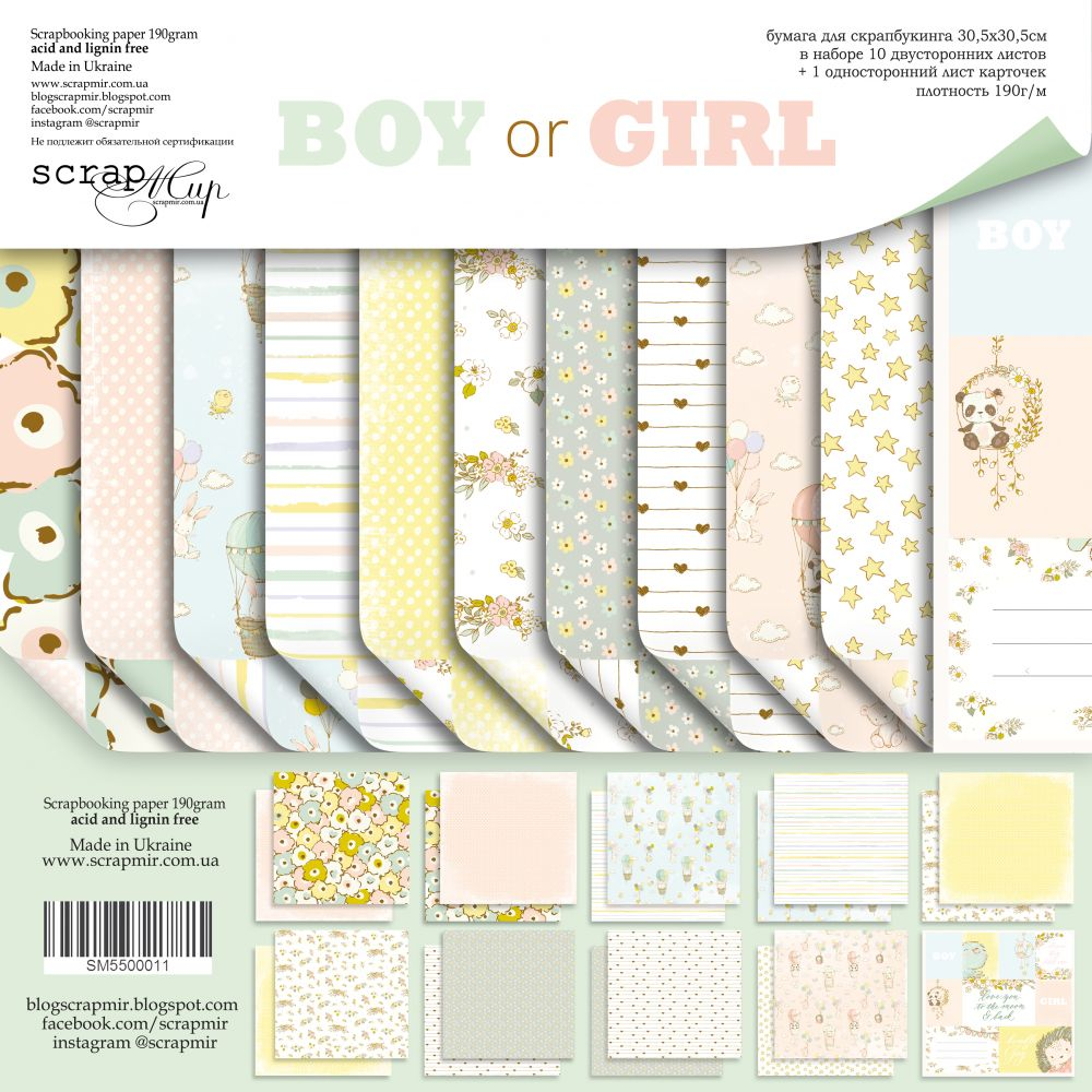 Boy or Girl 12 x 12 Paper Pack - Scrapmir