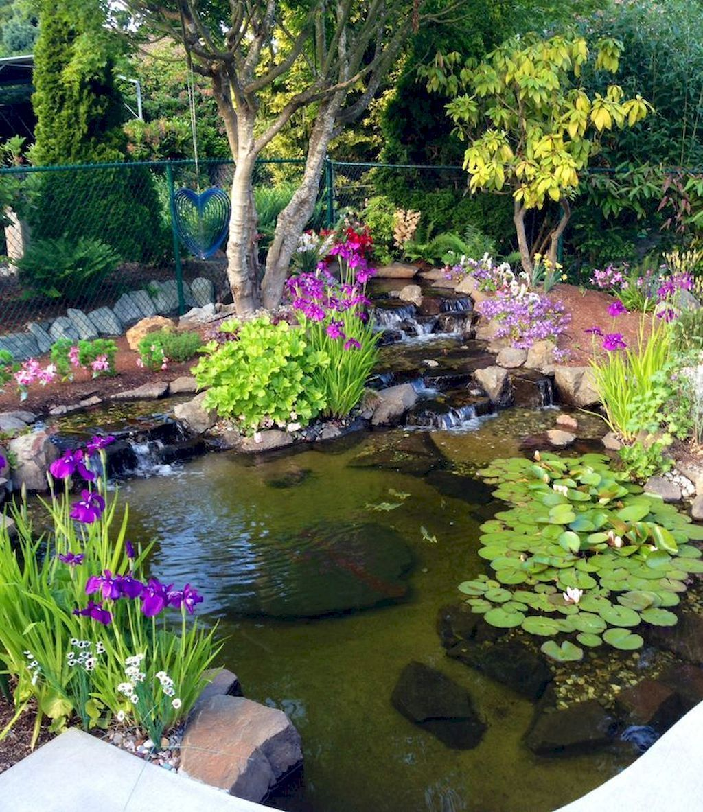 6 Reasons Why You Should Build a Pond