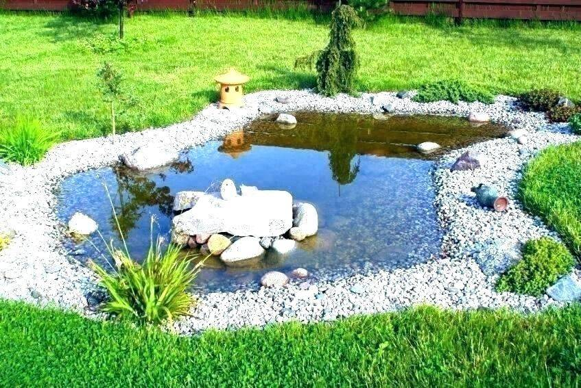 Top Reasons You Should Have a Pond in Your Backyard
