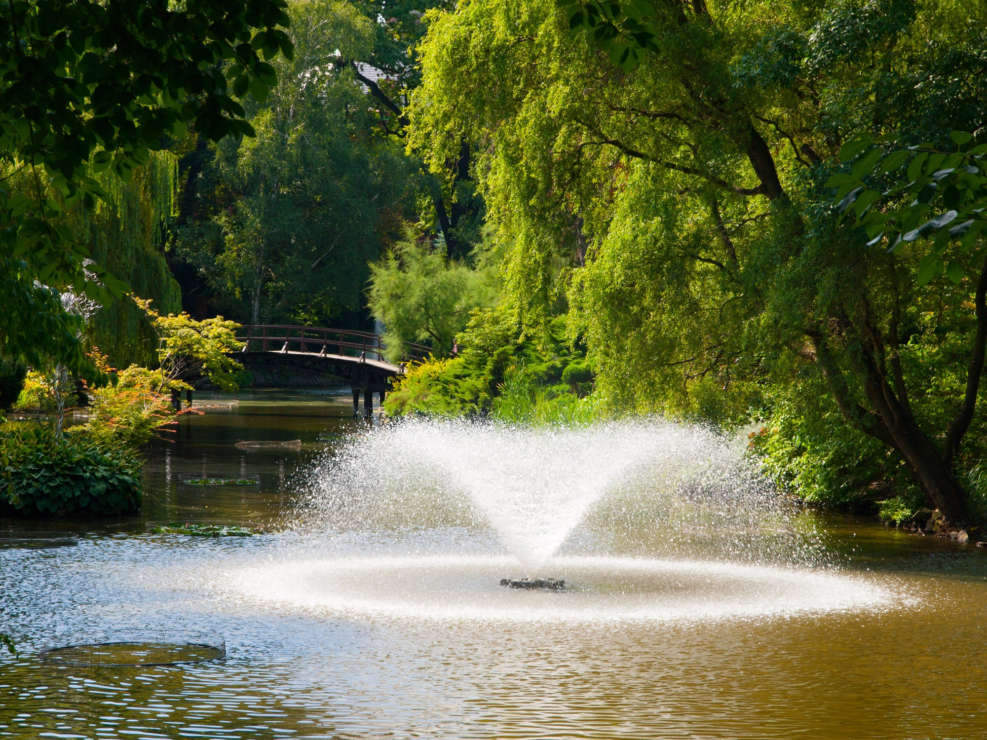 Do Pond Fountains Aerate?