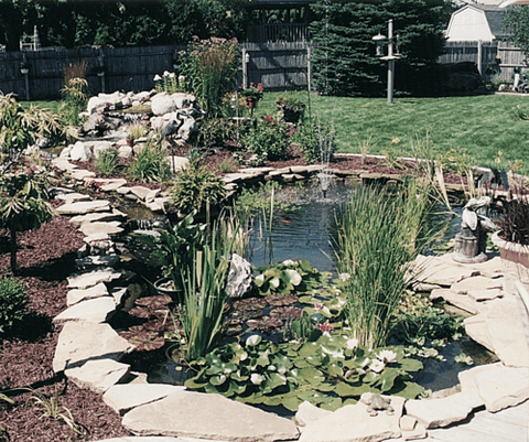 Pro-Series Medium Pond Kit - Complete for 11' X 16' Pond