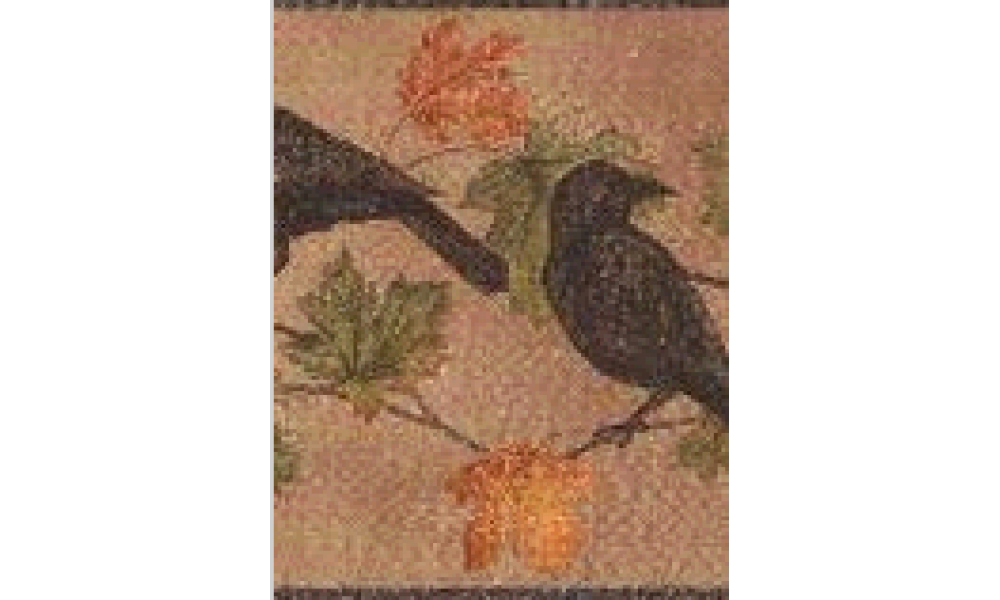 Light Brown Bird WL5686 Wallpaper Border