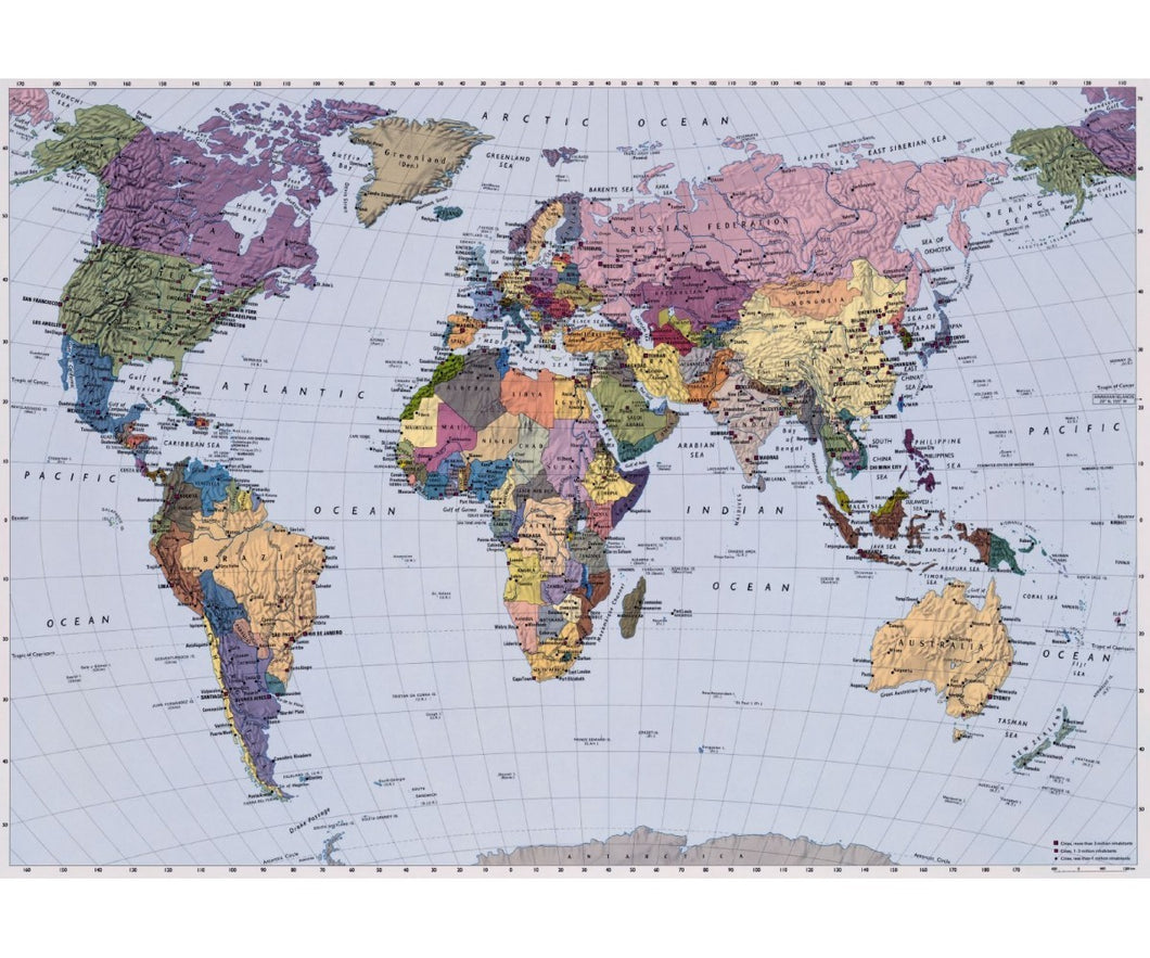 World Map 4-050 Wall Mural