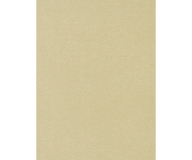 Textured Plain Beige 5902-02 Wallpaper