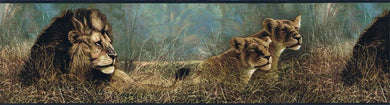 Lions  SP76462 Wallpaper Border
