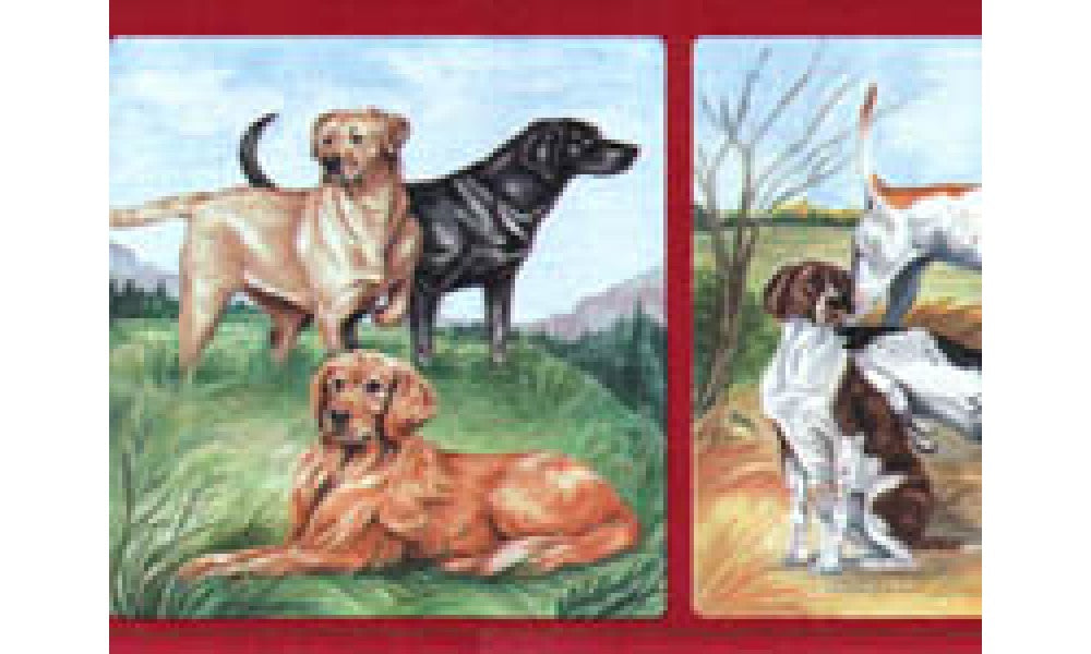 Dogs B1304P Wallpaper Border