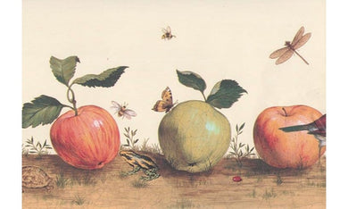 Beige Insects And Apple 30662330 Wallpaper Border