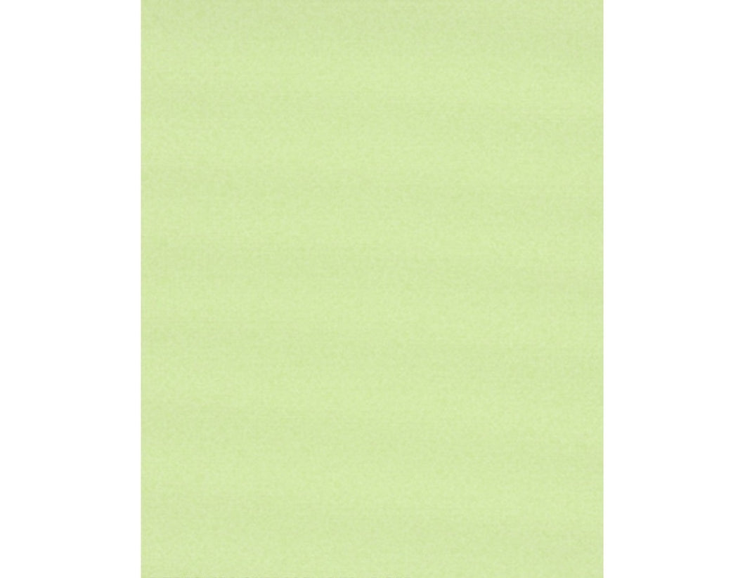 Textured Plain Green 7302-07 Wallpaper
