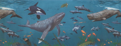 Sharks Whales Underwater KZ1282B Wallpaper Border